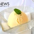 最新アイスクリームメーカー「Ice Deli(アイスデリ)」とは?